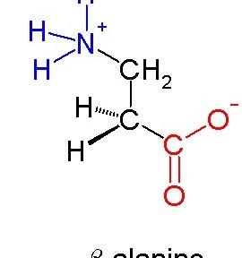 Beta-alanine molecuul